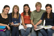 Diverse group of students studying