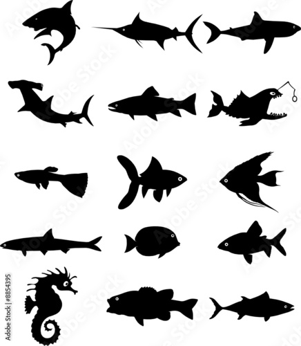fish silhouette vector file