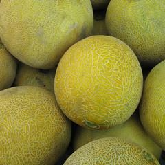 Cantaloupes muskmelons