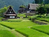 rural japan poster