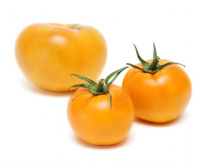 Tomato Vegetables isolated on white