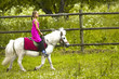 Sweet little girl in pink dress with her white pony