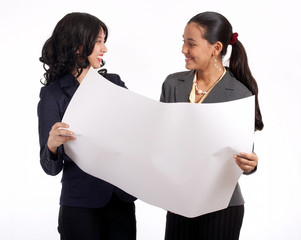 two businesswoman working together on a new project
