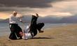 aikido au japon