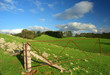 Farmland in the Adelaide Hills