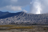 Volcano Bromo in national park, Java, Indonesia poster