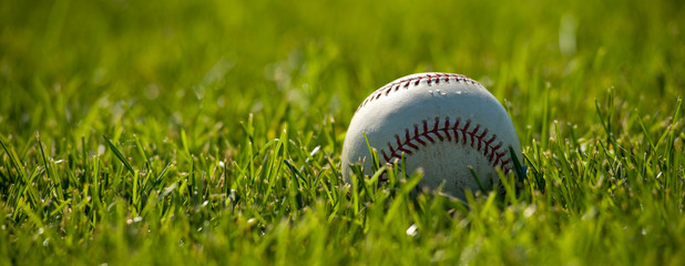 A white leather baseball on a grass field on a sunny day
