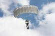 Parachutiste - 8915914