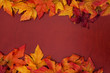 Yellow and red fall leaves on wood background - 8917529