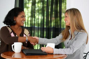 Two Women Shaking Hands In An Office