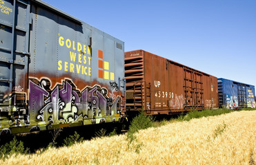 Graffiti on a Train in the middle of a wheat field