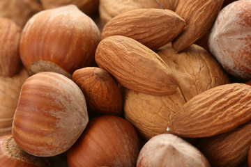 background of various nuts - hazelnuts walnuts and almonds