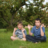 two brothers pretending to meditate in apple orchard, poster