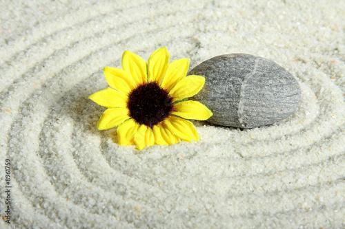 Stein mit Blüte