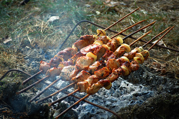 Shish kebab which is making on nature