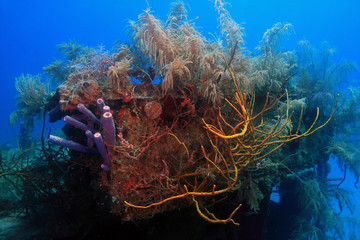 underwater wreck