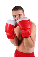 portrait of athletic boxer