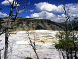 Mammoth Hot Springs - Yellowstone National Park poster