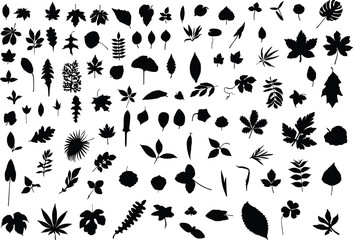 A hundred silhouettes of different leaves