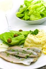 matjes filet - hering -mit püree,salat,wein