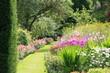 bosquets fleuris - 8999905