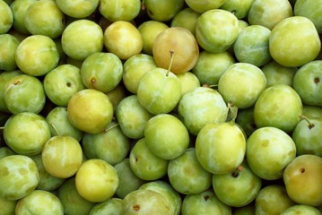 plums greengages