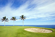 Hawaiian Golf Course on Lava Ocean Shore of Kona Island