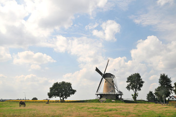 Dutch windmill in landscape
