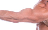 Bicep close up , isolated on white poster