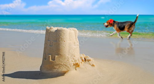 Dog prancing by pretty sand castle built at seashore