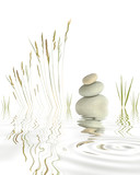 Zen Pebbles Grasses and Bamboo - 9043306