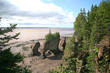 Hopewell Rocks, tNew Brunswick, Canada at low tide.