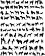 100 silhouettes of different breeds of dogs