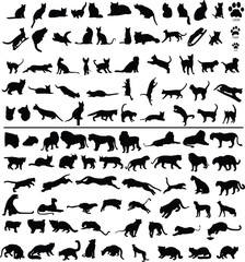 100 silhouettes of big and small cats