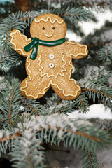 Christmas ginger bread boy on tree with snow
