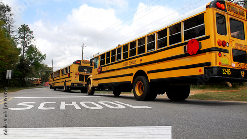 School buses lined up at school crosswalk - 9057398