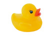 Yellow plastic duck a over white background
