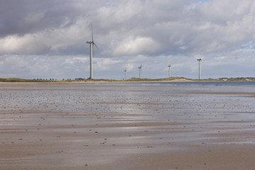 Windmills on shore