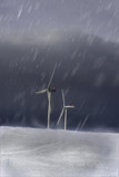 Windmills in a snow storm