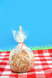 caramel candy apple with peanuts on a stick