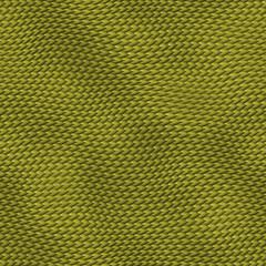 SnakeTexture