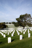 Endless Headstones, United States National Cemetery poster