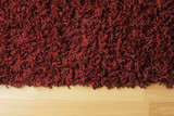 Red fluffy rug on laminate floor poster