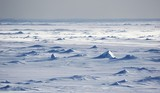 Endless Antarctic snowfields beyond horizons
