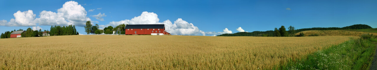 Norwegian Farm Panorama 2