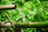 Bamboo lengths of pipe set up to direct water poster