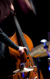 Fototapety Acoustic double bass player - Classic Jazz