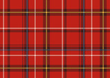 Scottish plaid. poster
