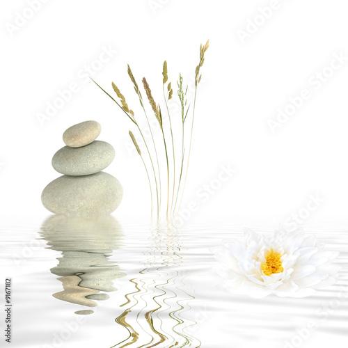 Zen Tranquility - 9167182
