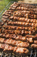 fresh meat on a grill close up shoot
